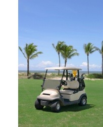 Golf Buggy Insurance